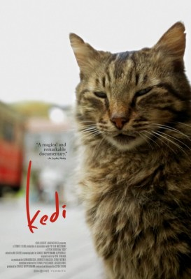 Cat lovers - can you believe it? A highly regarded indie film, all about cats?!!!